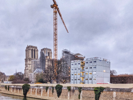 ROGUIERPHOTOS - La grue de Notre Dame