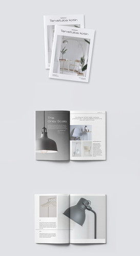 pages%20Behance_edited.jpg