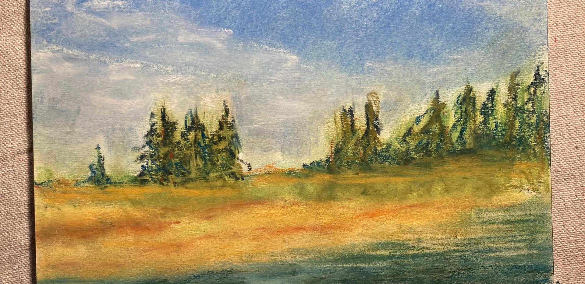 Pastel National Forest Landscape