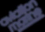 Aviation Marine HD Logo (5).png