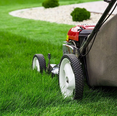Tips-for-Efficient-Lawn-Mowing_edited.jpg