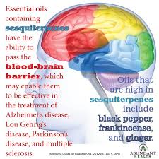 brain image oils.jpg