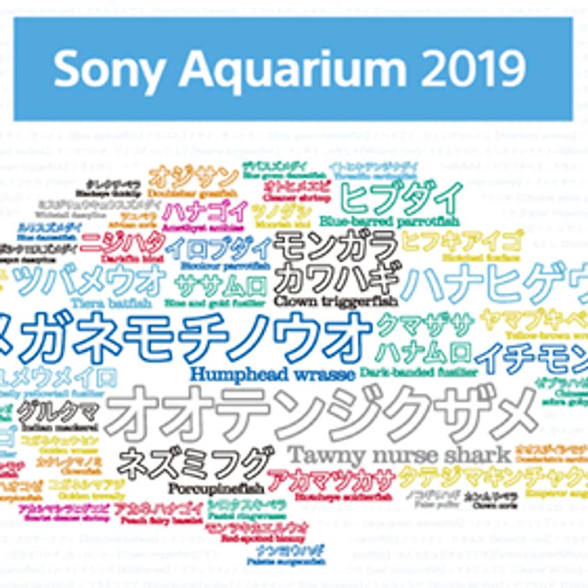 〜Sony Aquarium 2019〜アーティストライブ