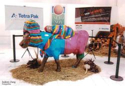 Vaca expuesta en Alto Noa Salta