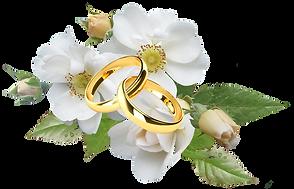 rose rings.png