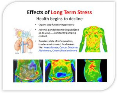 The-effects-of-longterm-Stress 2.jpg