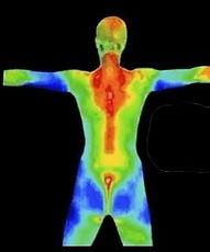 thermal body scan.jpg