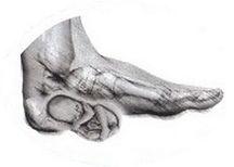 Big-Pregnant-Foot.jpg