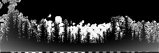 forest-clipart-silhouette-1_edited_edite