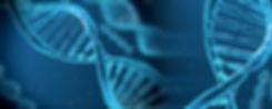 DNA1.jpg