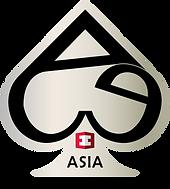 FINAL ACE Logo.PNG