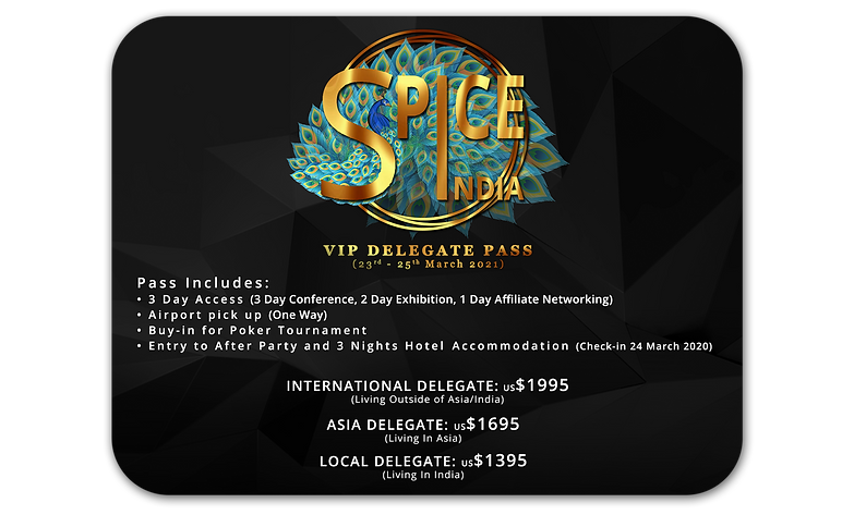 DELEGATE PASS VIP 2.png