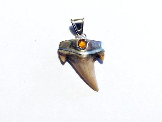 Megalodon Shark Tooth Pendant