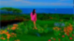 sophies garden recent_edited.jpg