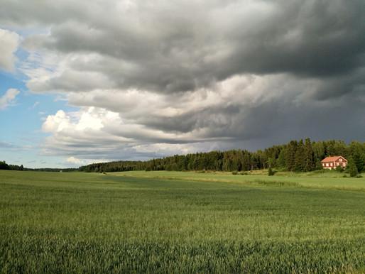 Wolkentage - eine Wortreise durch trübe Tage