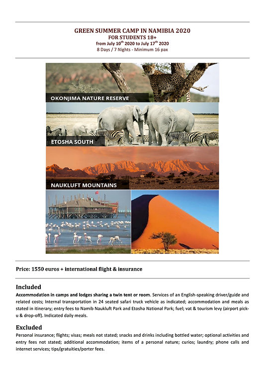 NAMIBIA 2020 POSTER .jpg