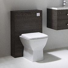 Toilet Furntue