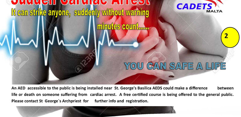 mgoz aed poster_Page_3.jpg