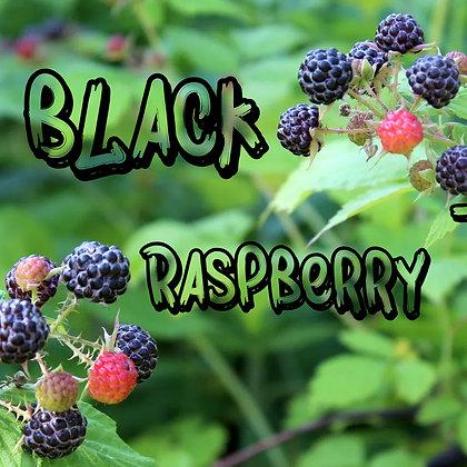 King's Black Raspberry Pipe Tobacco Bulk