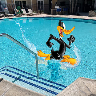 LT_InternLife_DaffySwimming.jpg