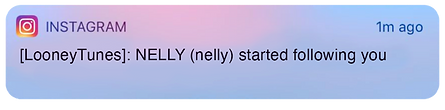 nelly_following.png