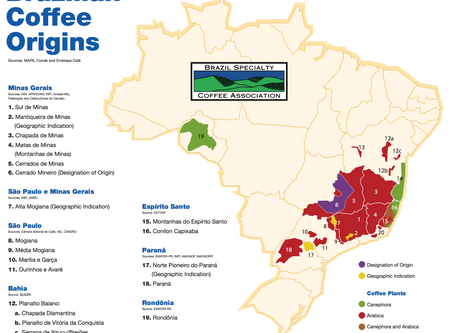 Brazilian Coffee History - A somewhat definitive guide! (Part 1)