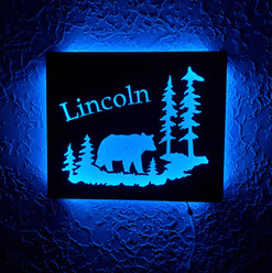 LED Lighted signs