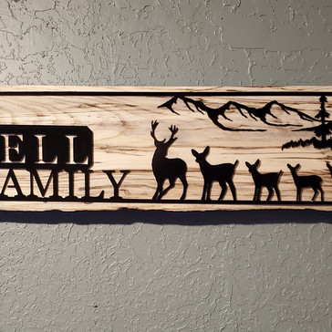 Custom family name signs