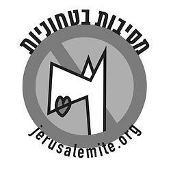 messyBoat logo