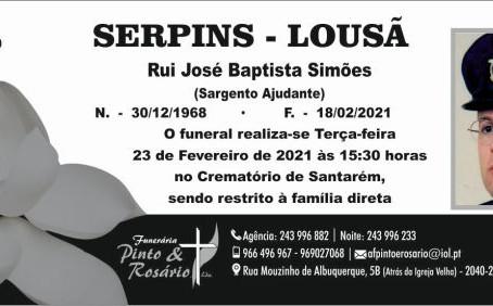 SERPINS - LOUSÃ