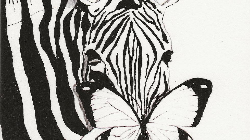 'Zebra'