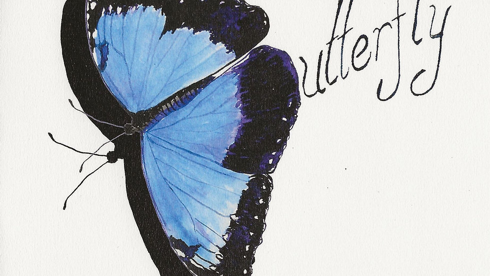 'Blue Morpho Butterfly'