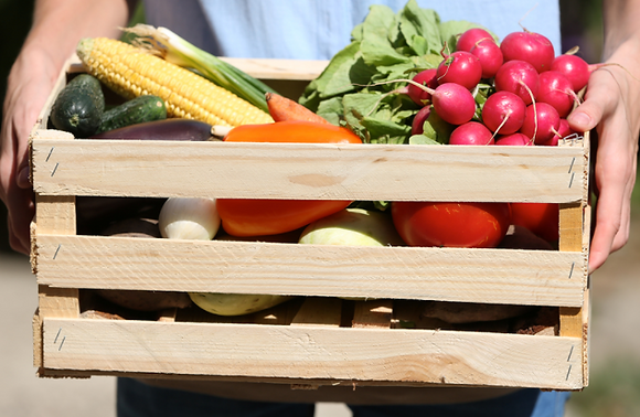 CSA Weekly Delivery Box