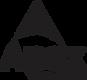 Large Apex Logo.png