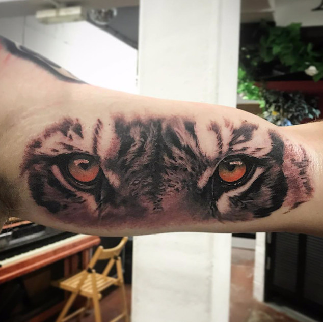 lion eyes small by the crooked rook.jpg