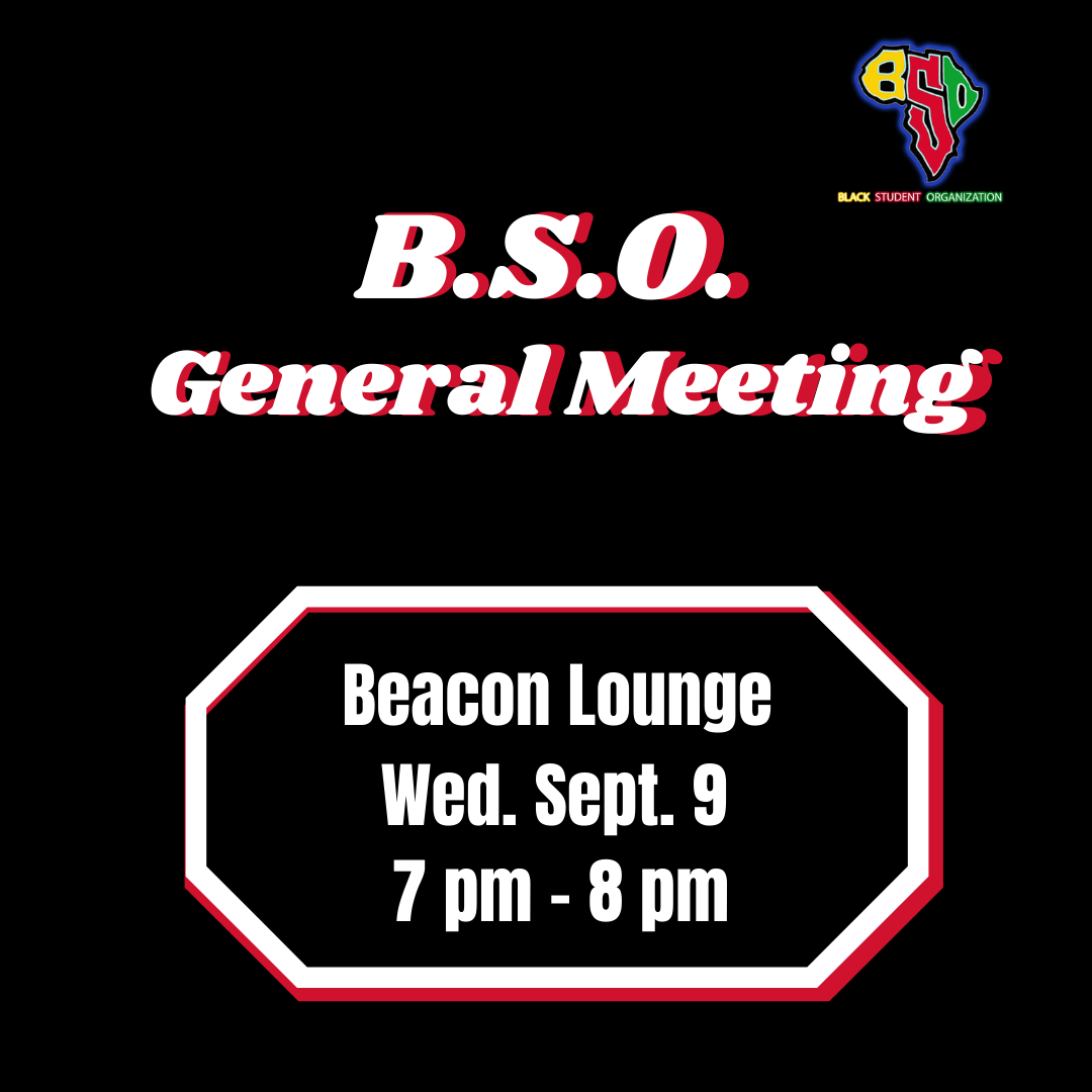 BSO meeting template 1.png