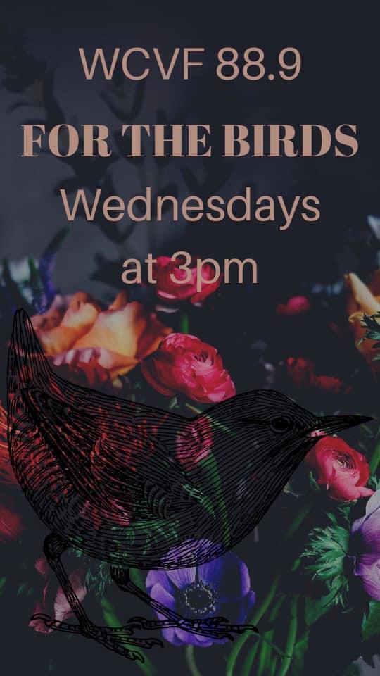Show Spotlight: For The Birds