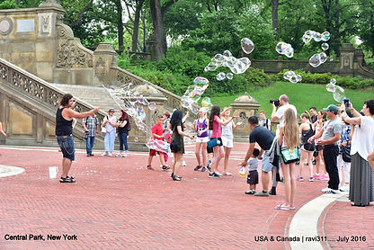 bubbles in new york