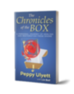 The Chronicles of the Box.png