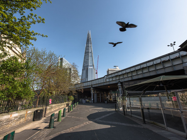 Birds fly through Borough Market during Lockdown