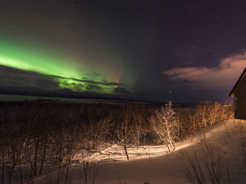 Watching the aurora from home