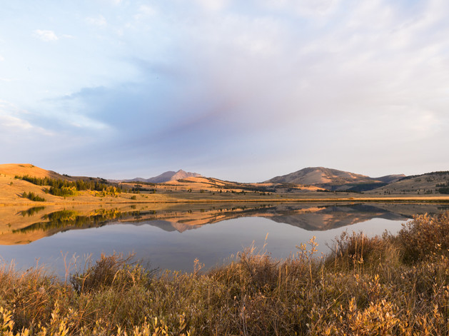 Swan Lake reflections, Yellowstone Natio
