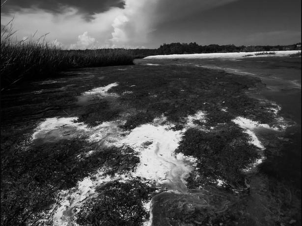 2015-08 Beach Cloud (Demarest Lloyd) BW.