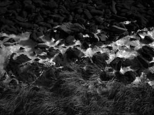 2015-01 Rocks Ice Grass BW.jpg