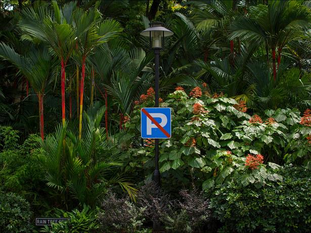 2015-01 No Parking (Singapore).jpg
