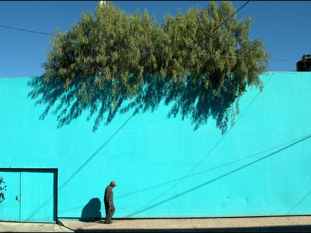 2010-01 Blue Wall (Mexico City).jpg