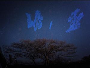2016-11 Blue Sky Tree.jpg