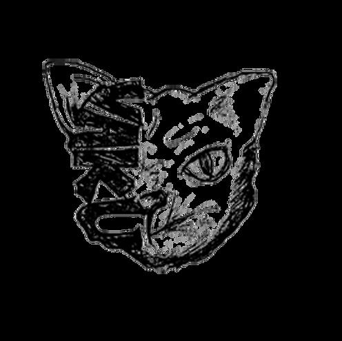 TRANSPARENT-BLACK-CAT.png