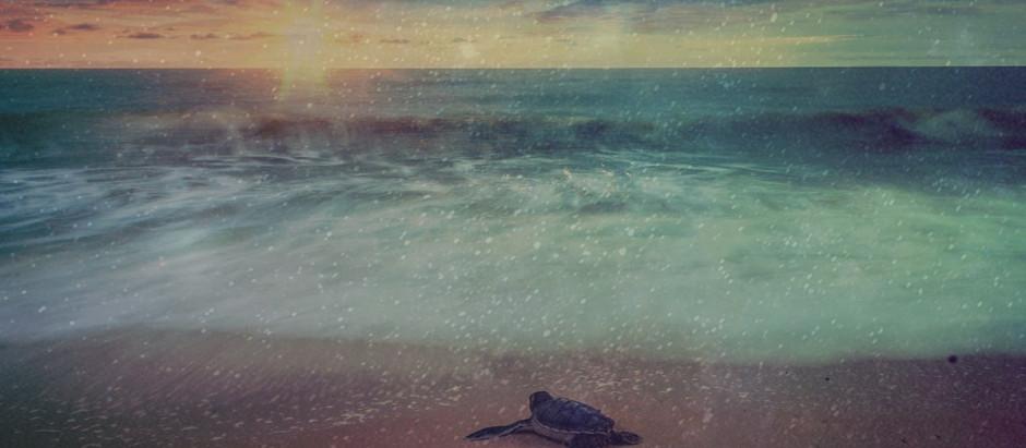 "Resenha: ""Oceanic"" de Waldson de Souza"