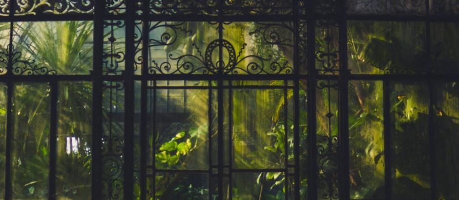 """Resenha: """"A Casa de Vidro"""" (As Estações vol. 1) de Anna Fagundes Martino"""